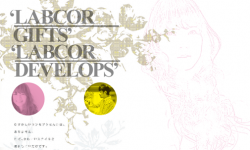 labcor2011-s